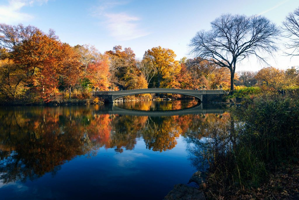 Bow Bridge - Central Park - Picture by Arek